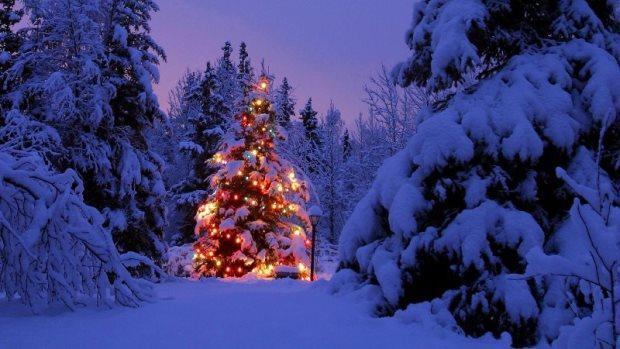 wintersport-kerst-2013-4